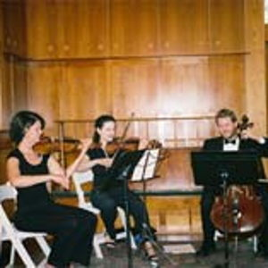 String Quartets: Taylor-Rich String Trio