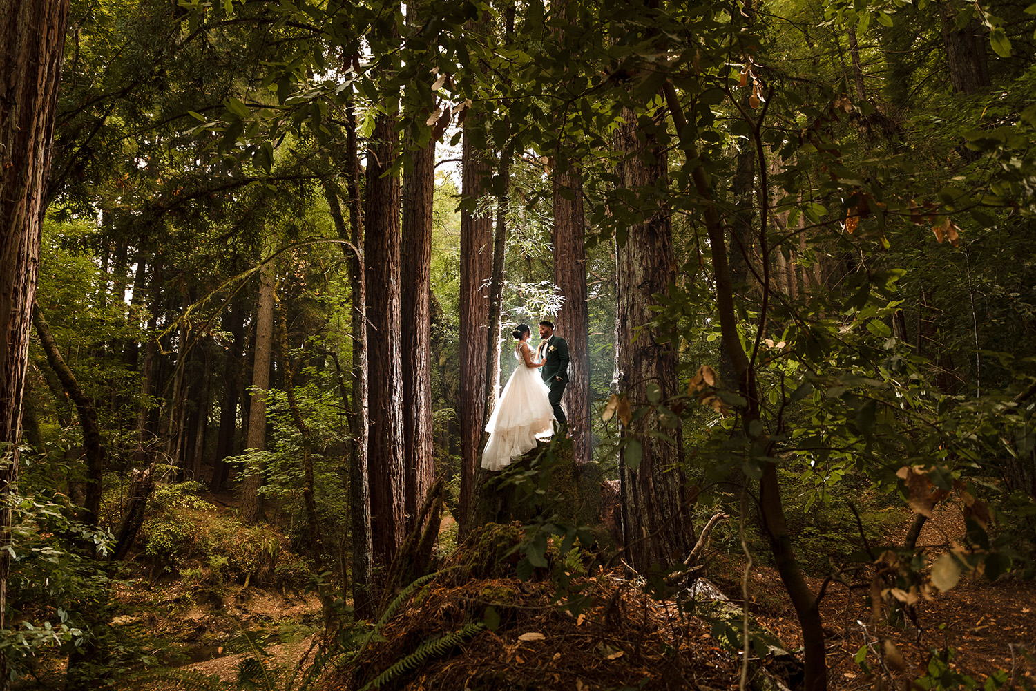 Welcome to our newest wedding photographer, Andrea de Anda Photography!