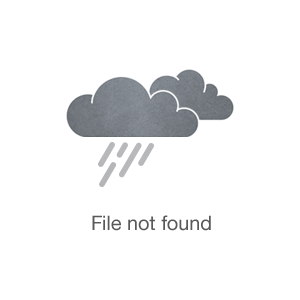 Vineyards and Wineries: The Venue at CeNita Vineyards
