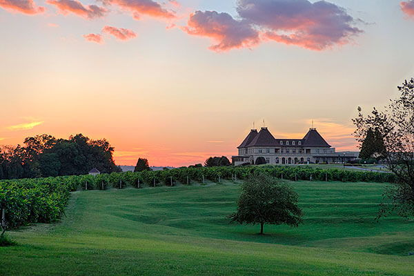 Chateau Elan - Romance Among the Vineyards