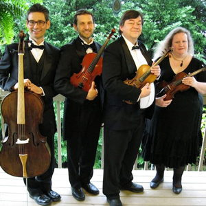 String Quartets: Stone Mountain Strings