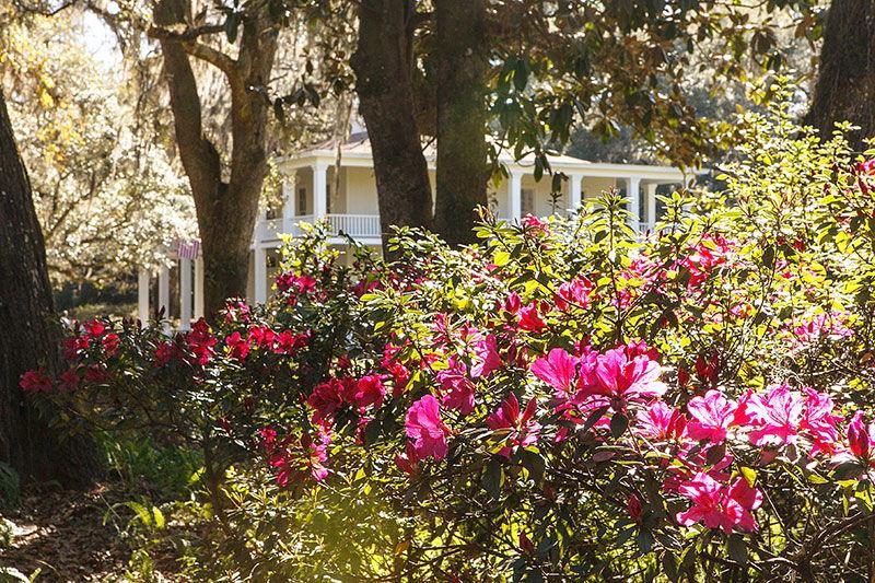 Wesley Mansion at Eden State Park